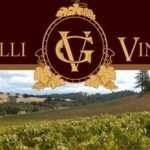 Gianelli Vineyards In Jamestown California